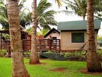 Tentalow behind coconut palms at Molokai Ranch Lodge