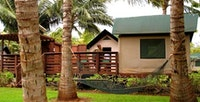 Tentalow behind coconut palms at Molokai Ranch Lodge
