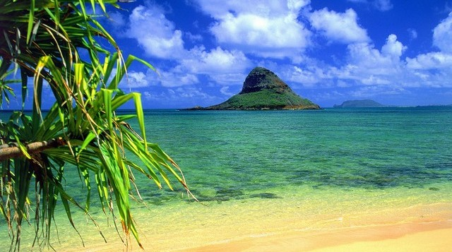 Beach with beautiful blue water with Chinaman's Hat tiny island off of Oahu