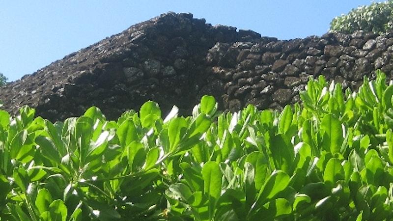 Manoa Valley Deep in Hawaii History