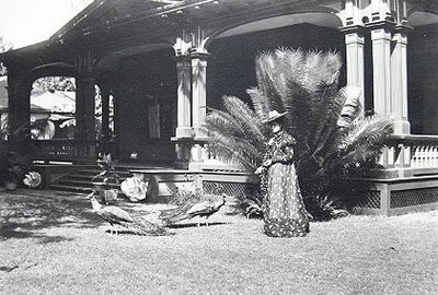 Princess Kaiulani feeds a chicken near her front porch