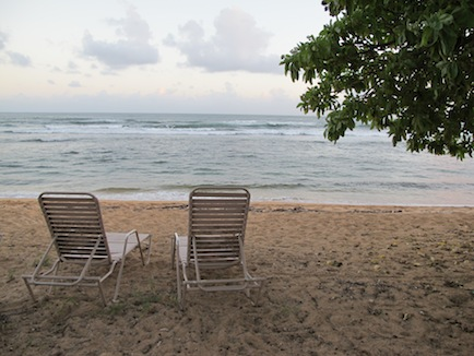 2 beach chairs under a tree, on a beach in Kauai