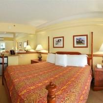 Equus Hotel 81