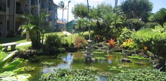 Gardens and ponds at the Marc Resorts Pono Kai