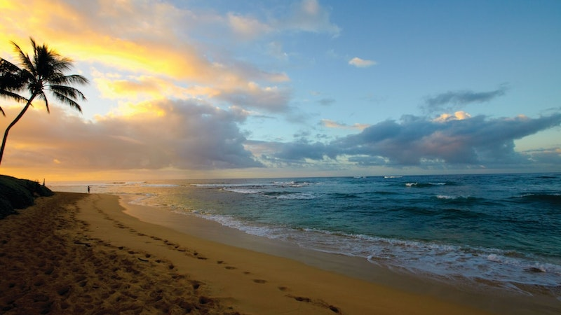 Hawaii vacation planning: now more than ever!