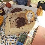 Cutting board with chocolate and cacao seeds