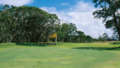 Yellow checkered flag marks hole at Hawaii golf course