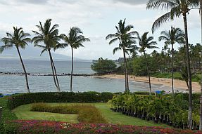 Coconut trees in between landscaped hotel property and a Hawaii beach