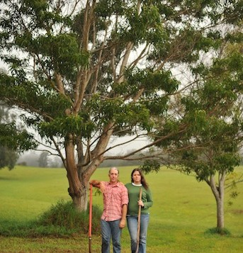 A couple holding shovels under a tree