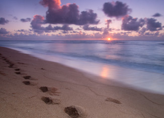 footprints in the sand on a Kauai Beach