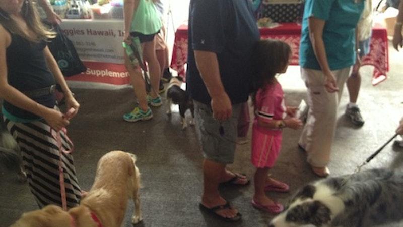 Da Kine Canine Festival