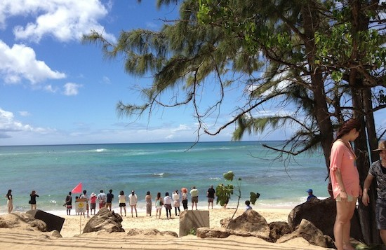 People looking at turtles at Laniakea Beach