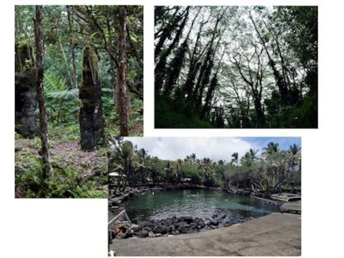 My Must Do Suggestions for Hilo, Hawaii