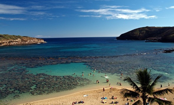 Snorkelers enjoying a clear, sunny day at Hanauma Bay