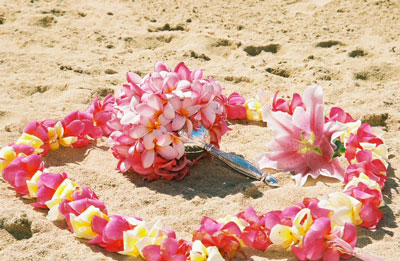 Plumeria lei on sand with plumeria bouquet inside