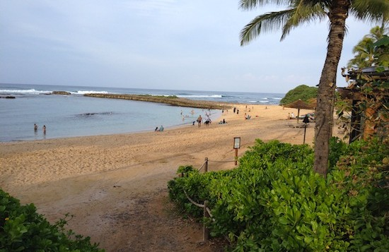 Manmade lagoon at Turtle Bay Resort