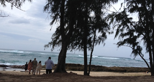 Couple marries on the beach at Turtle Bay