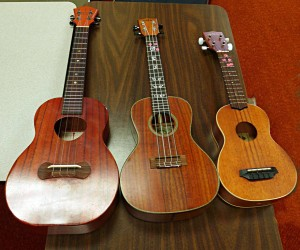 Three different types of koa wood ukuleles on display