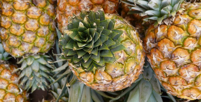 Close up shot of several pineapples