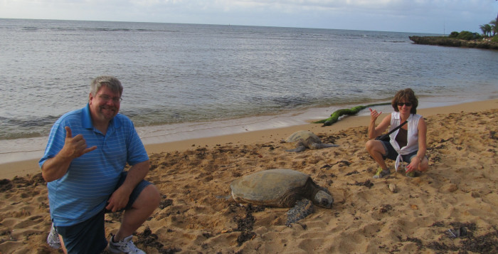 A couple squats next to a sea turtle on a beach