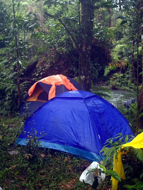 tents at Hawaii campsite
