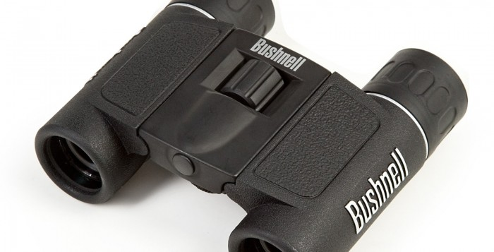 Pair of Mini binoculars