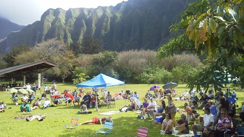 The Bluegrass in the Ko'olaus Campout