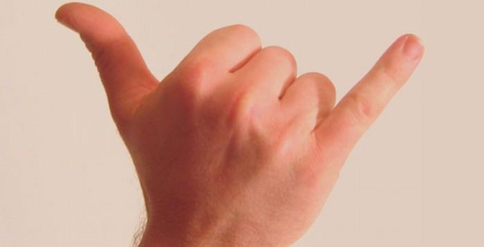 shaka sign hand gesture