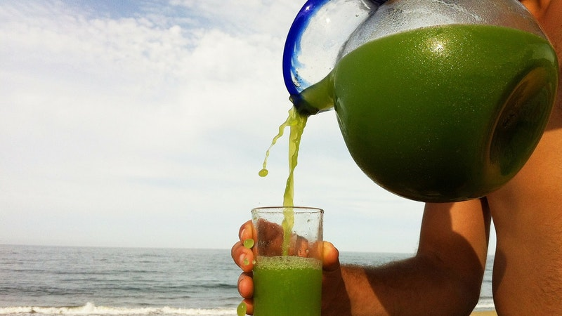 5 Hawaii Beverages to Refresh and Rejuvenate