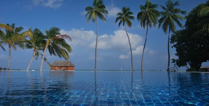 A low shot of an infinity pool with palm trees