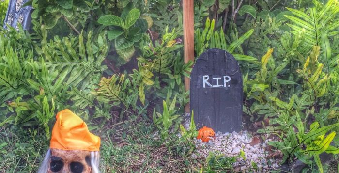 Halloween graveside and skull in Hawaii