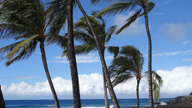 Hawaii's Seasons: Pay Attention