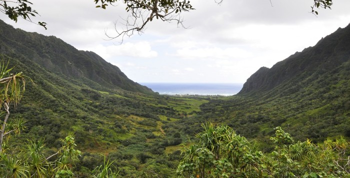 A beautiful valley in Hawaii
