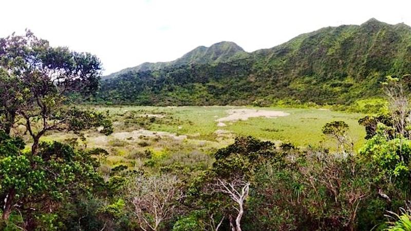 Ka'au Crater Loop Trail: Beautiful and Dangerous