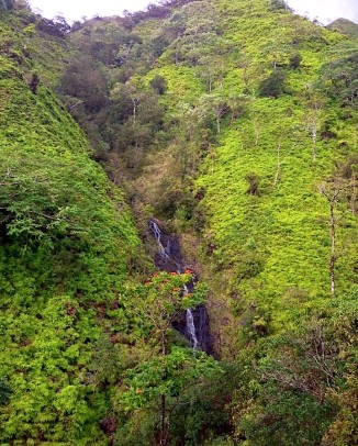 Ka'au Crater waterfall, wide shot