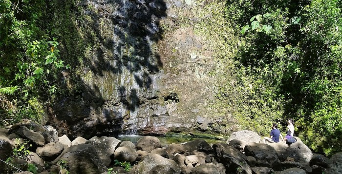 A waterfall base in Manoa