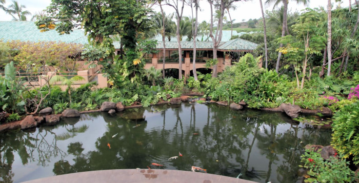 garden and poi pond at Menele Bay on Lanai
