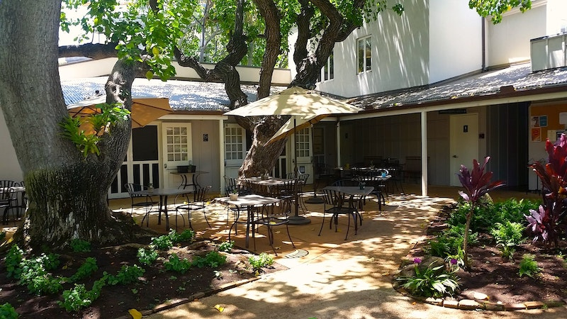 Locally-sourced at Hawaii Mission Houses Social Hall & Cafe