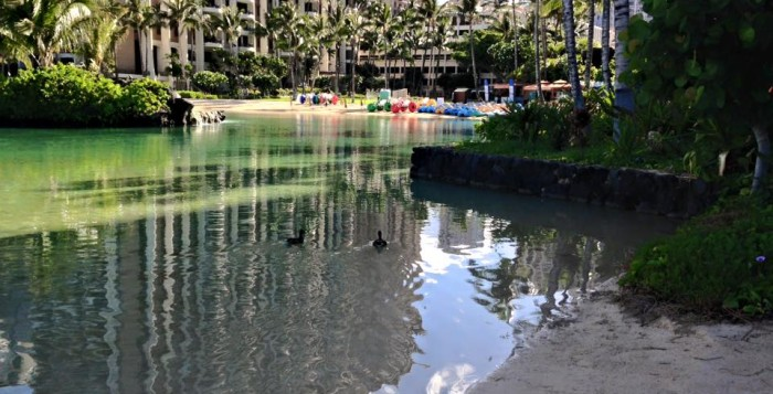 The Hilton Hawaiian Village in Waikiki
