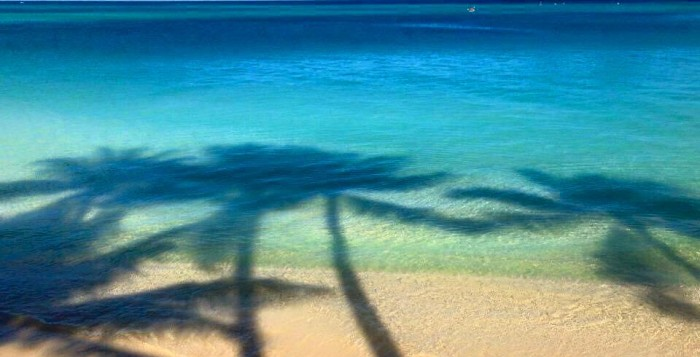 kailua beach with shadows of palm trees