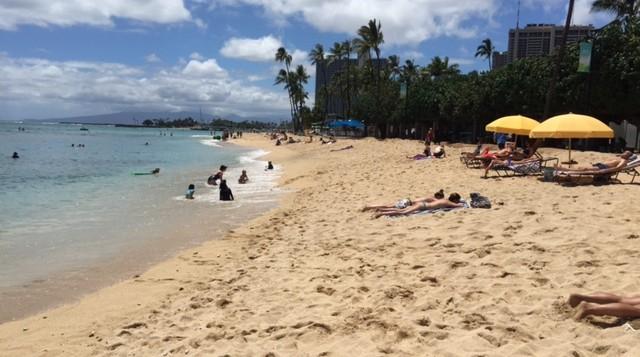 a beach in Waikiki