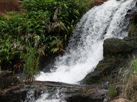 water cascading from Wipoo falss