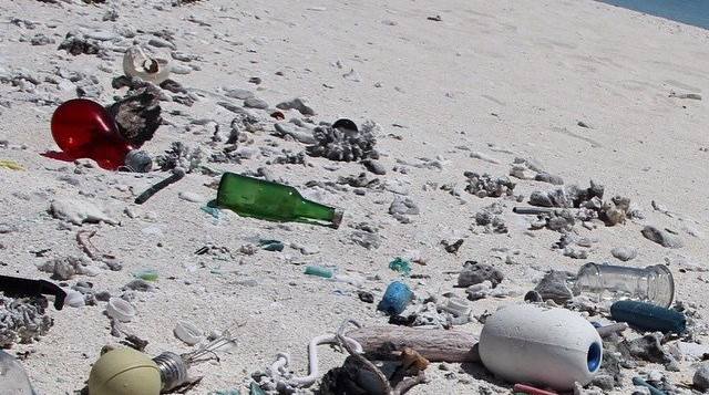 Beach litter, such as bottles and plastic