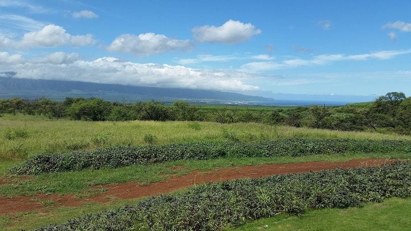 Hawaii Sea Spirits soar in Upcountry Maui