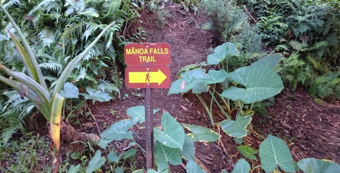 a sign for manoa falls