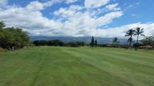 Haleaka View