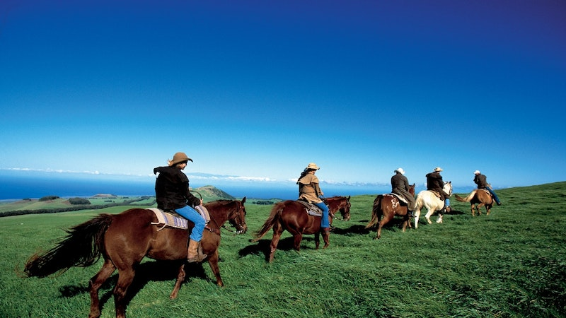 Giddy Up Best Places For Horseback Riding In Hawaii