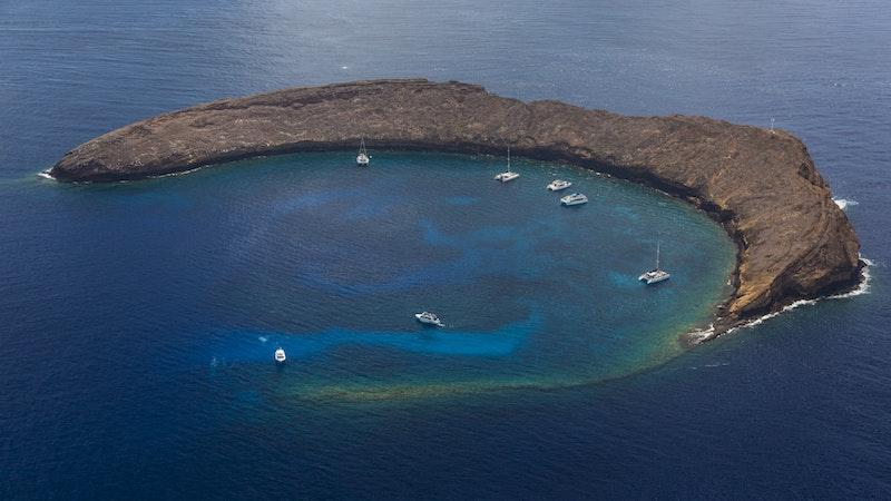 Top 10 Beginning Scuba Sites in Hawaii