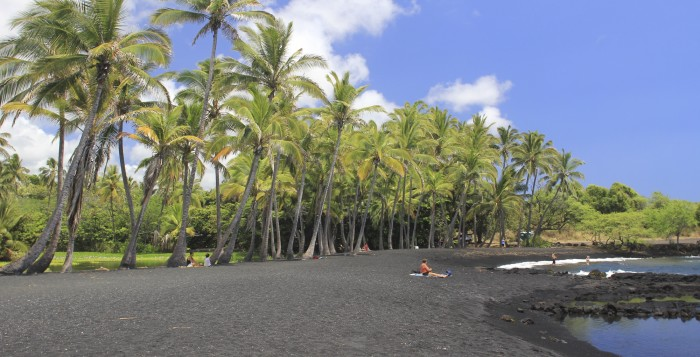 a black sand beach lined with palm trees