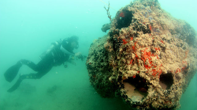 a diver near the engine of a downed seaplane in kaneohe bay